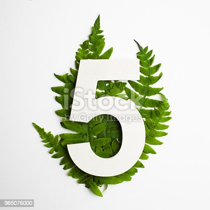 Floral Number Five Beautiful Green Leaves And Fern Foliage Numbers Stock Photo & More Pictures of Backgrounds