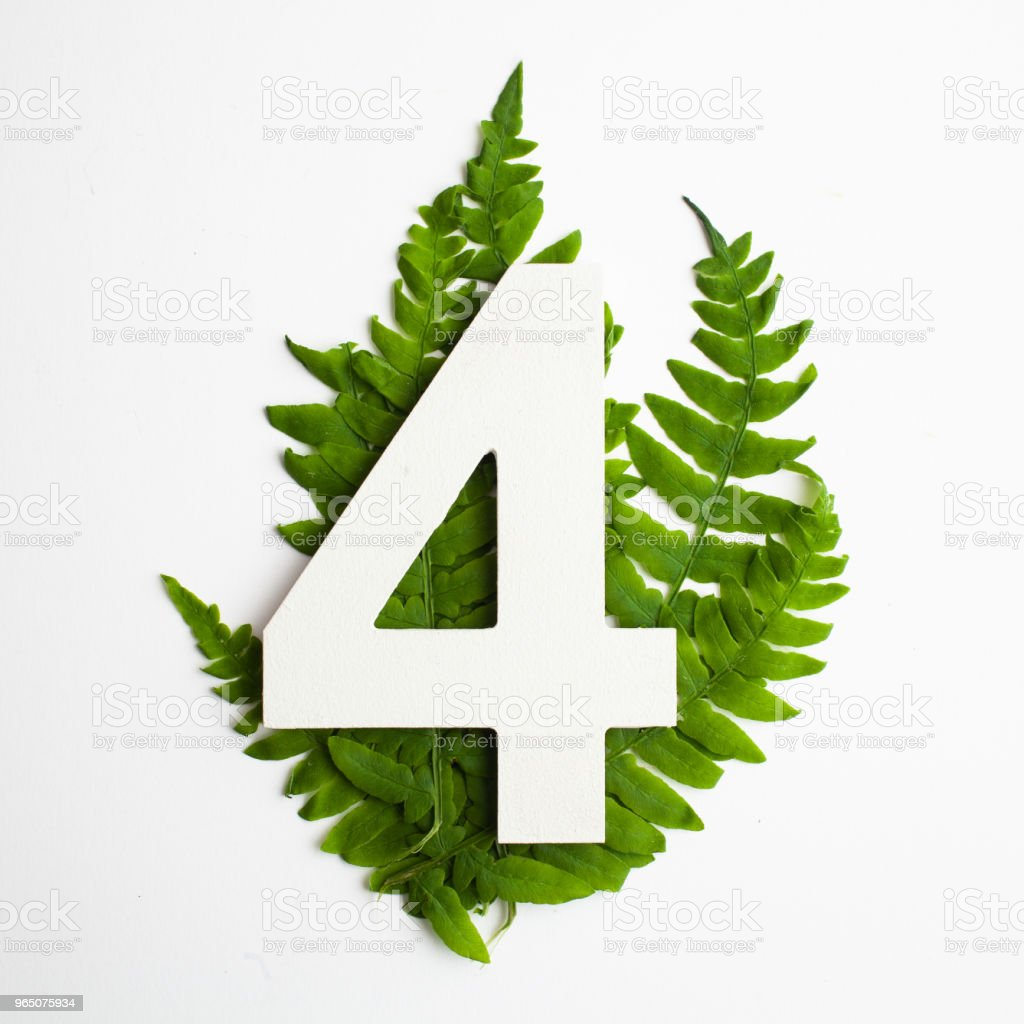 Floral number for. Beautiful green leaves and fern foliage numbers. royalty-free stock photo