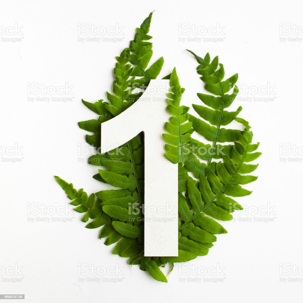 Floral number one, Beautiful green leaves and fern foliage numbers. zbiór zdjęć royalty-free