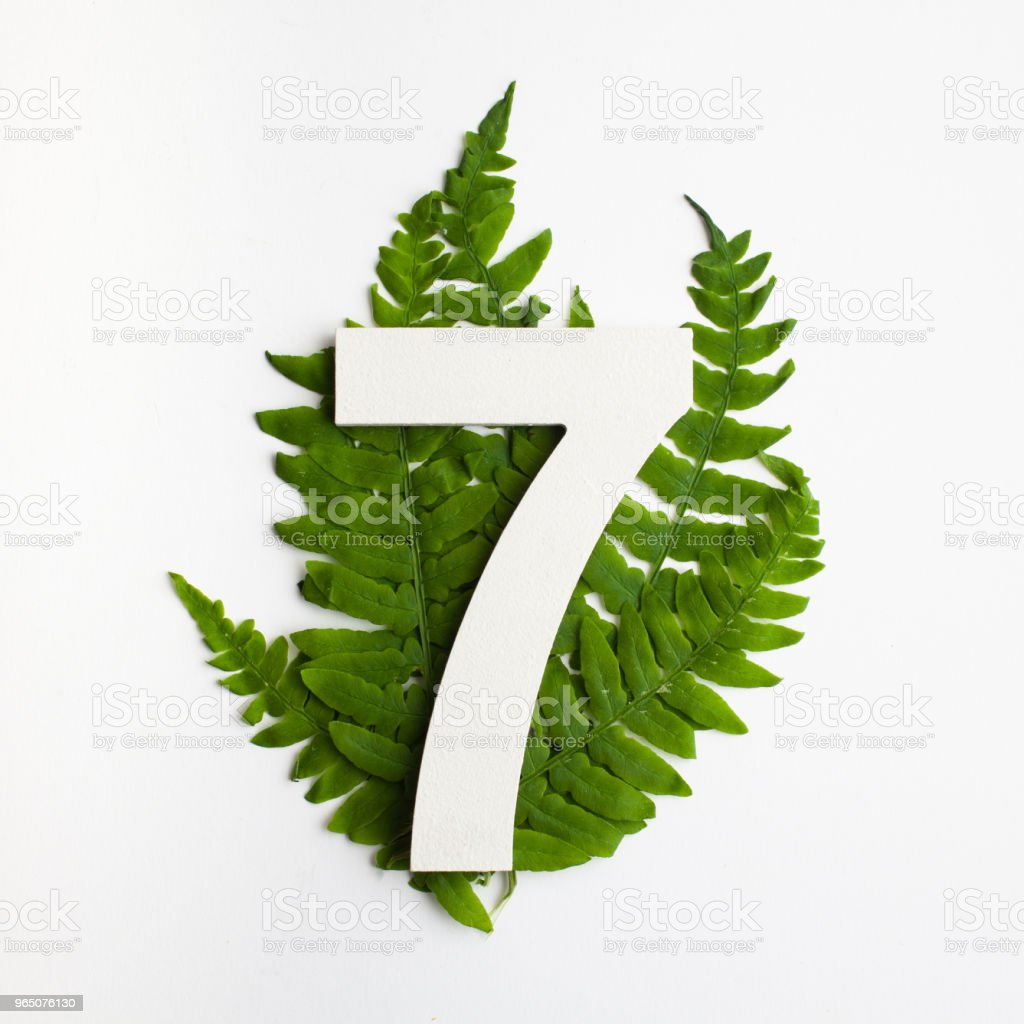 Floral number seven. Beautiful green leaves and fern foliage numbers. zbiór zdjęć royalty-free