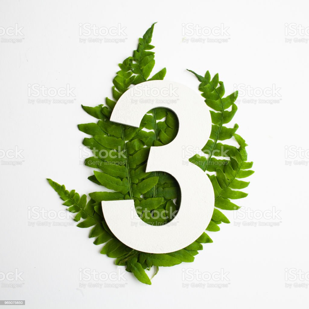 Floral number three . Beautiful green leaves and fern foliage numbers. zbiór zdjęć royalty-free