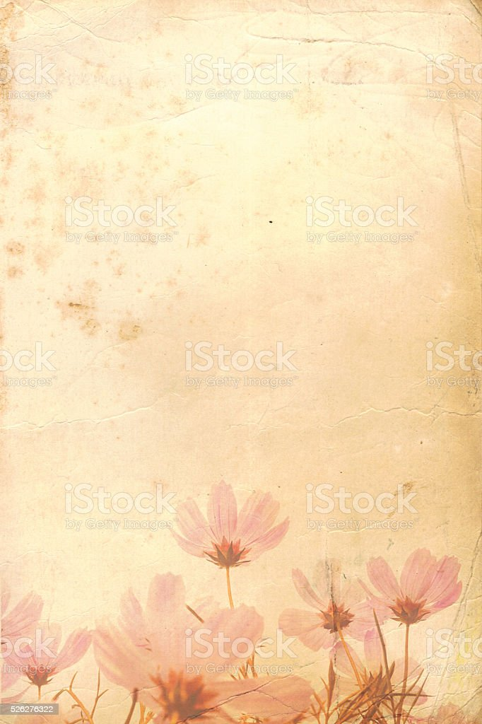 Floral old paper. Large XXXL stock photo