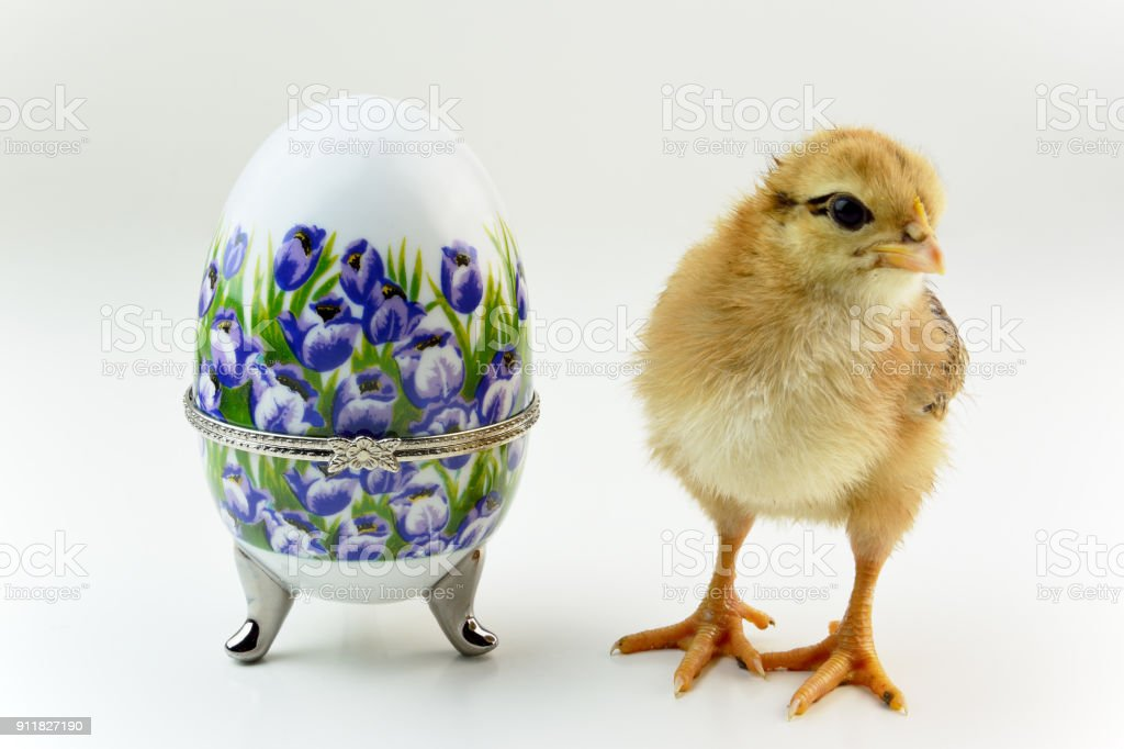 Floral painted decorative porcelain egg and chick stock photo