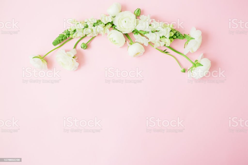 Floral pastel frame made of white flowers on pink background. Flat...