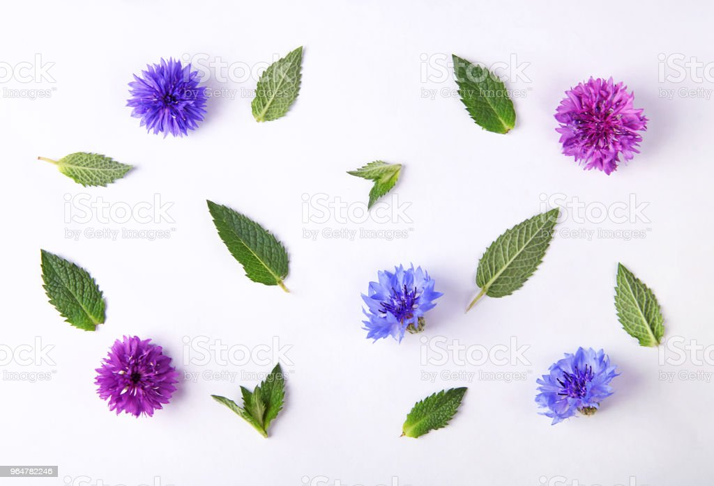 Floral pattern made of cornflowers, green leaves royalty-free stock photo