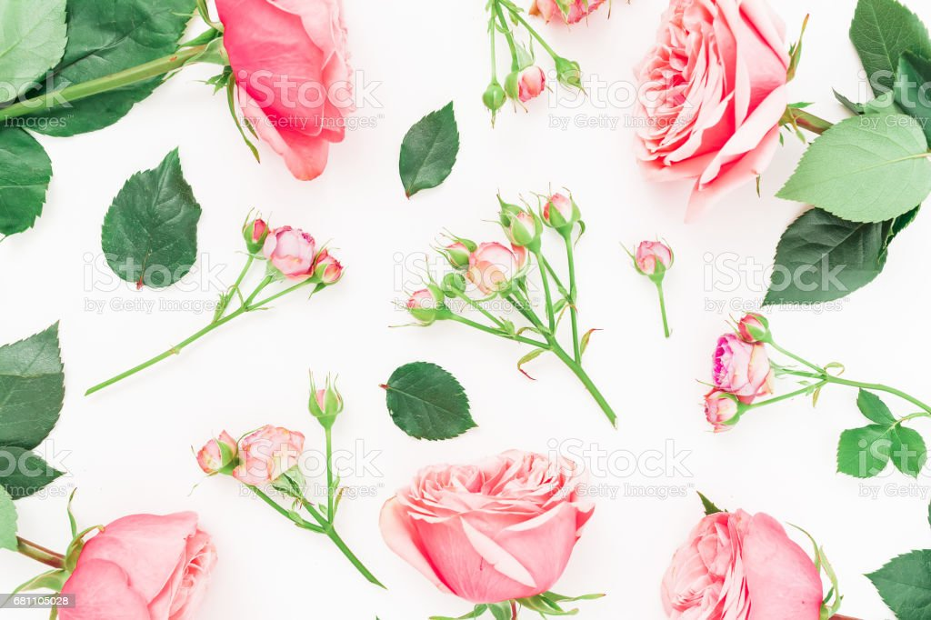 Floral pattern made of red or pink roses, buds and leaves on white background. Flat lay, top view. royalty-free stock photo