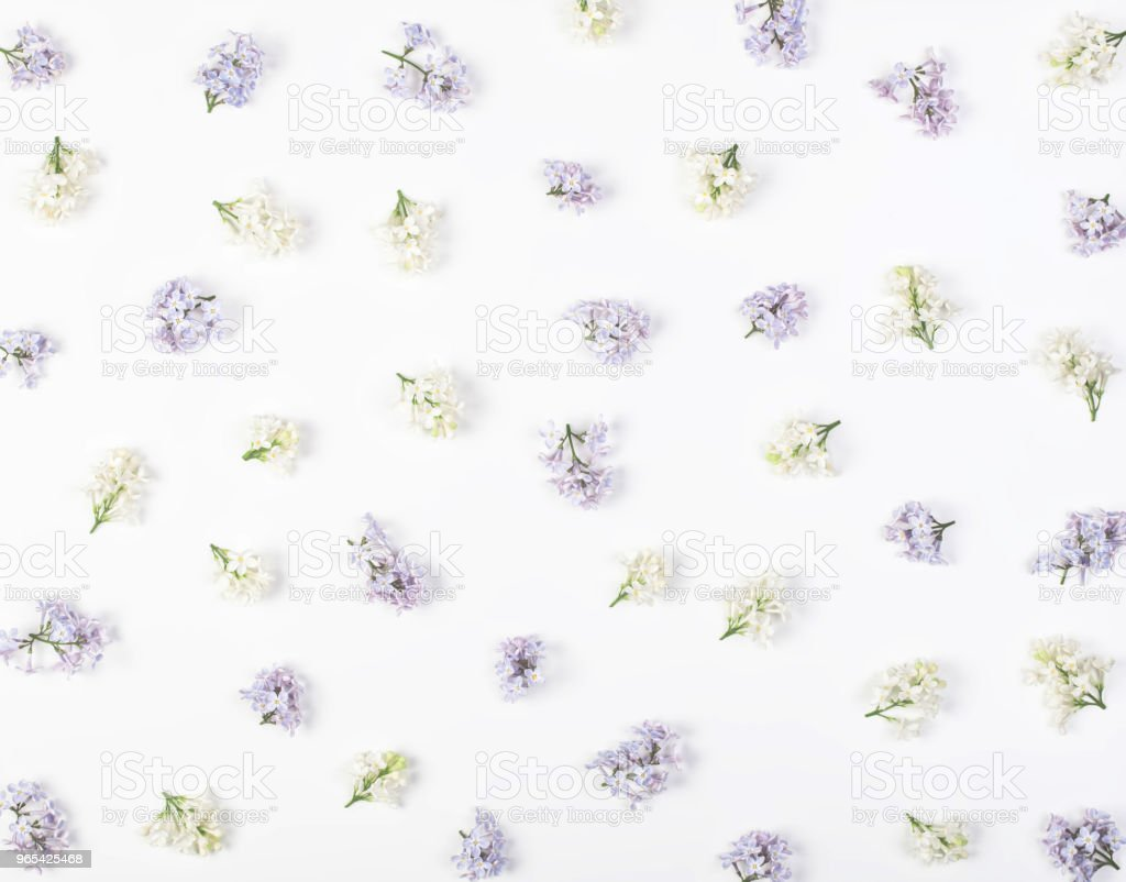 Floral pattern made of spring white and violet lilac flowers isolated on white background. Flat lay. Top view. royalty-free stock photo