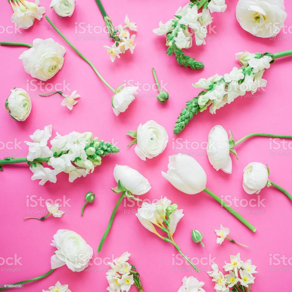 Floral pattern made of white flowers on pink background. Flat lay,...