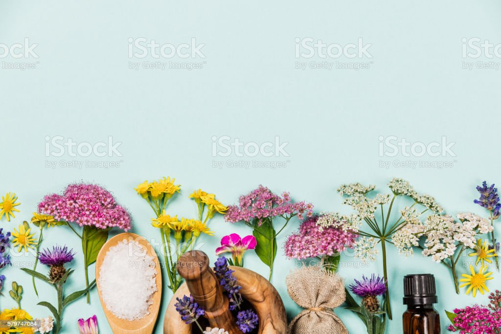 Floral pattern made of wild healing flowers and SPA products stock photo