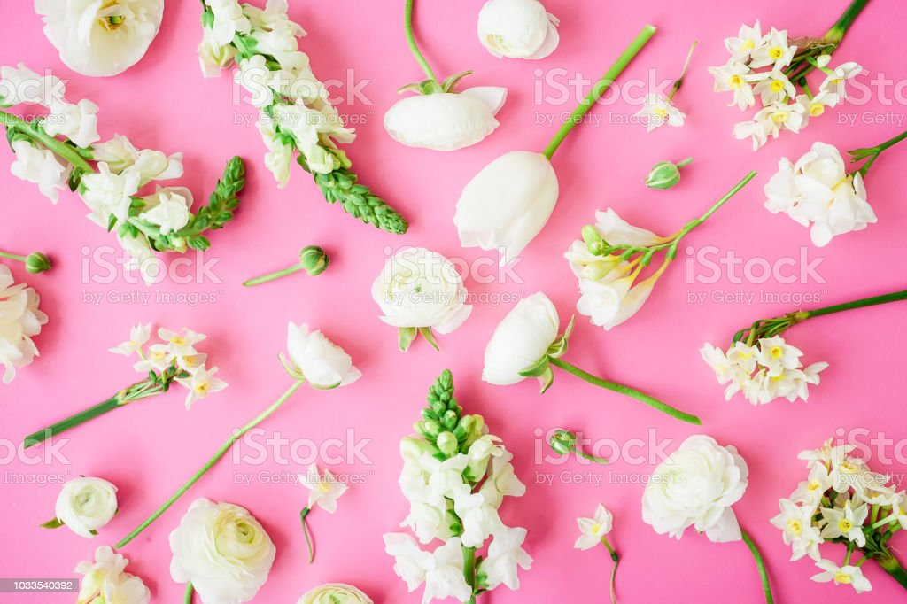 Floral pattern of beautiful white flowers on pink background. Flat...
