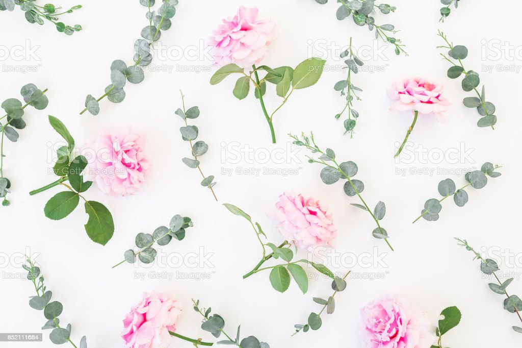 Floral pattern of pink flowers and eucalyptus branches on white...
