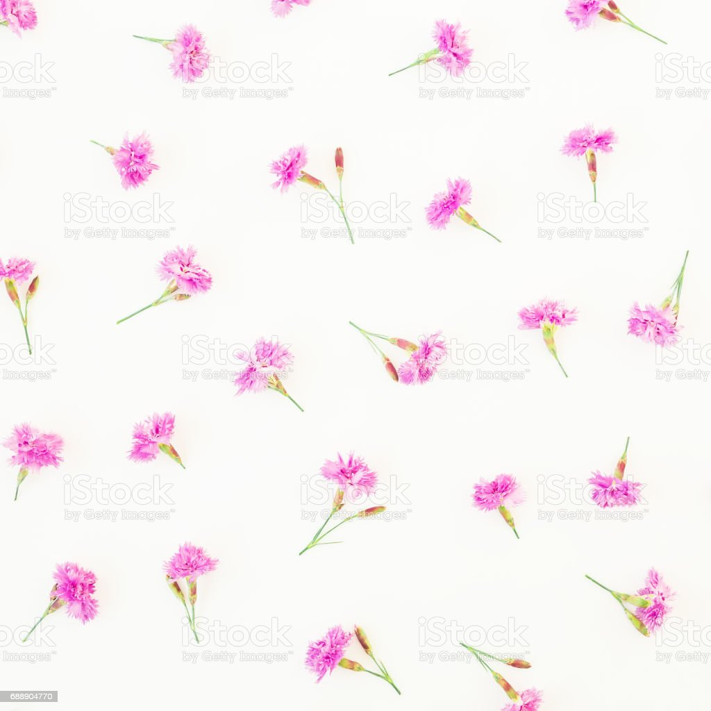 Floral pattern of pink flowers on white background. Flat lay, top...