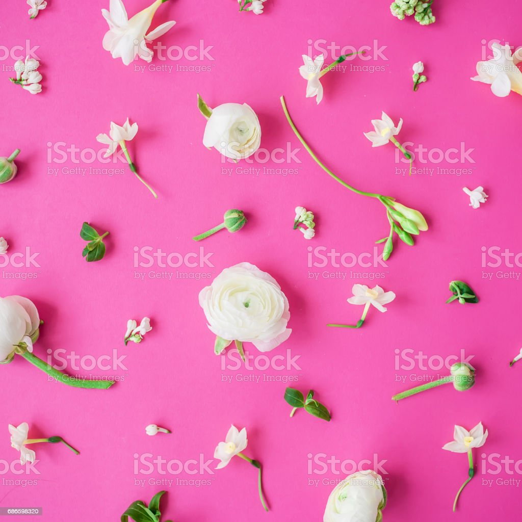 Floral pattern of white flowers and buds on pink background. Flat...