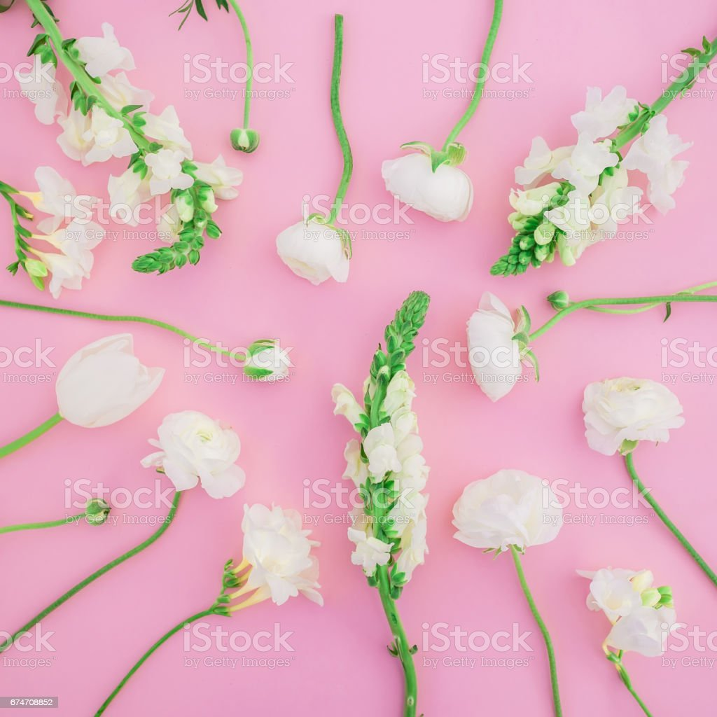 Floral pattern of white flowers on pink background. Flat lay, top...