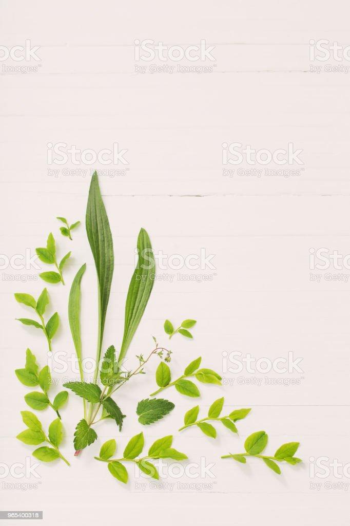 floral pattern on  white wooden background zbiór zdjęć royalty-free