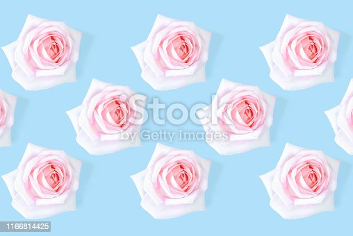 1147995495 istock photo Floral pattern with a pink rose on a blue background. 1166814425