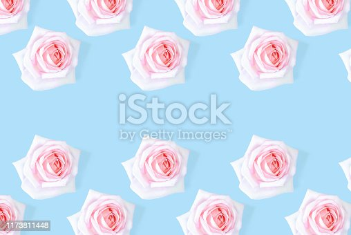 1147995495 istock photo Floral pattern with a pink rose on a blue background. 1173811448