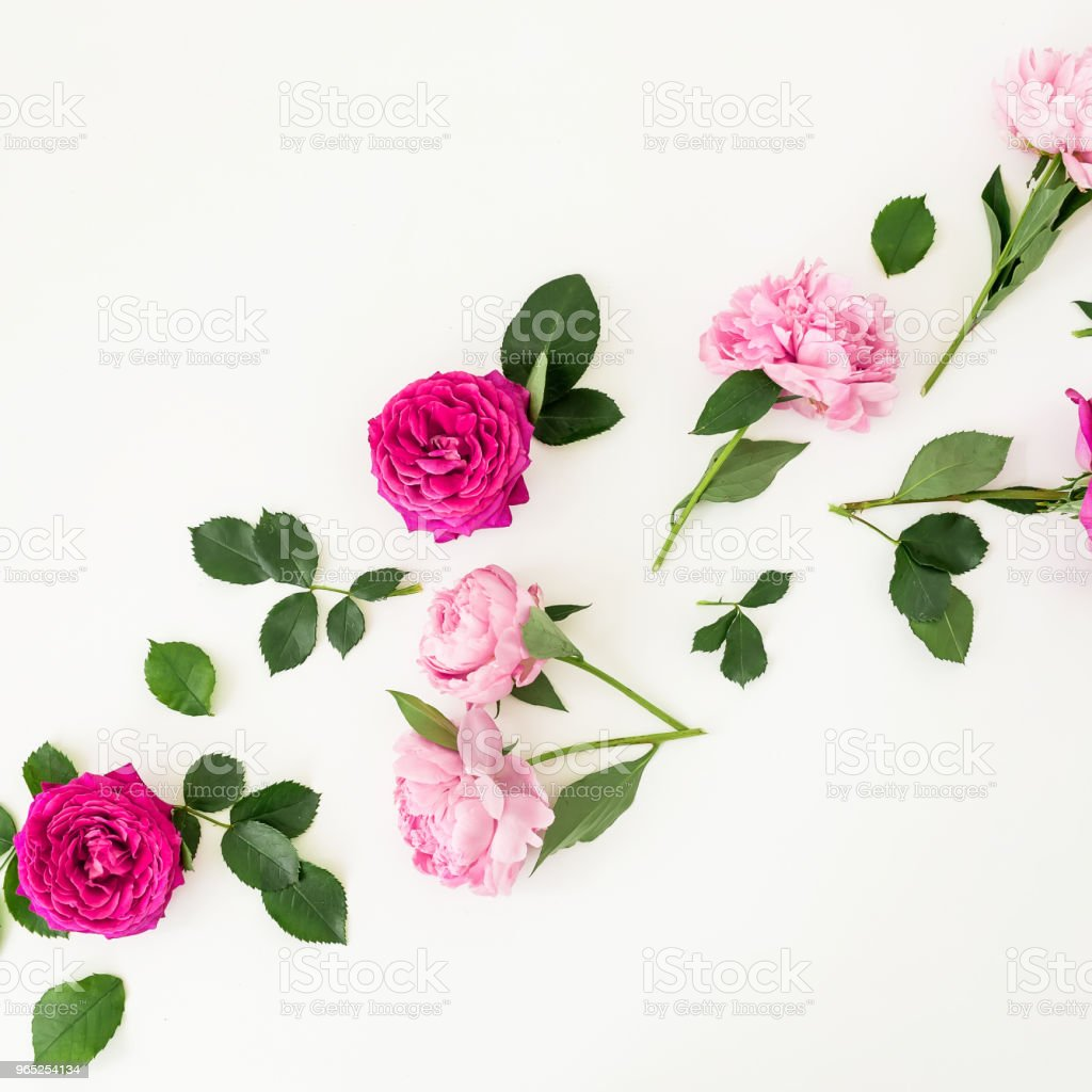 Floral pattern with pink rose flowers and leaves white background. Flat lay, Top view. Flowers texture. royalty-free stock photo