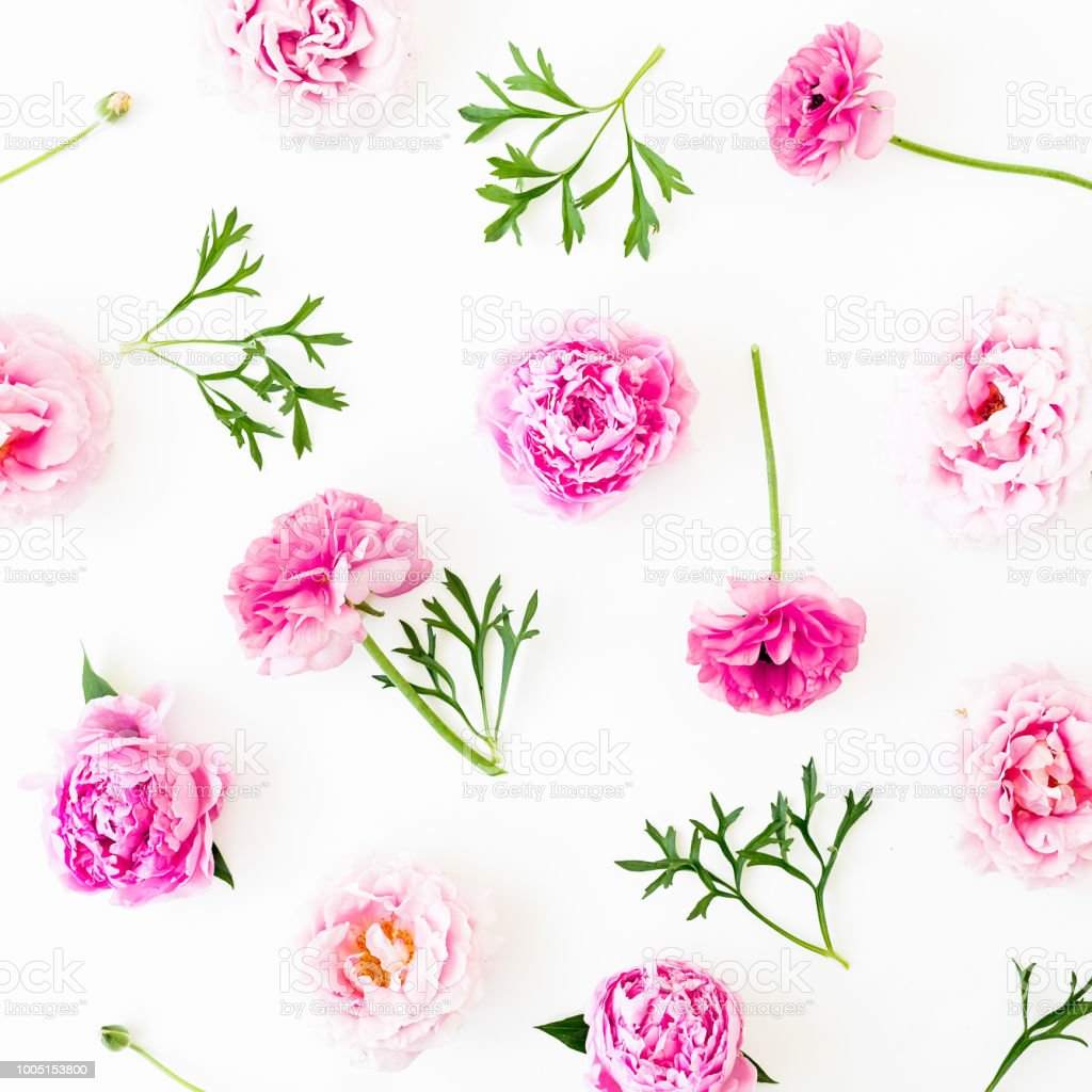 Floral Pattern With Pink Roses Anemone And Peonies Flowers White