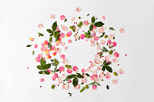 Floral round frame with rose petals and leaves on white