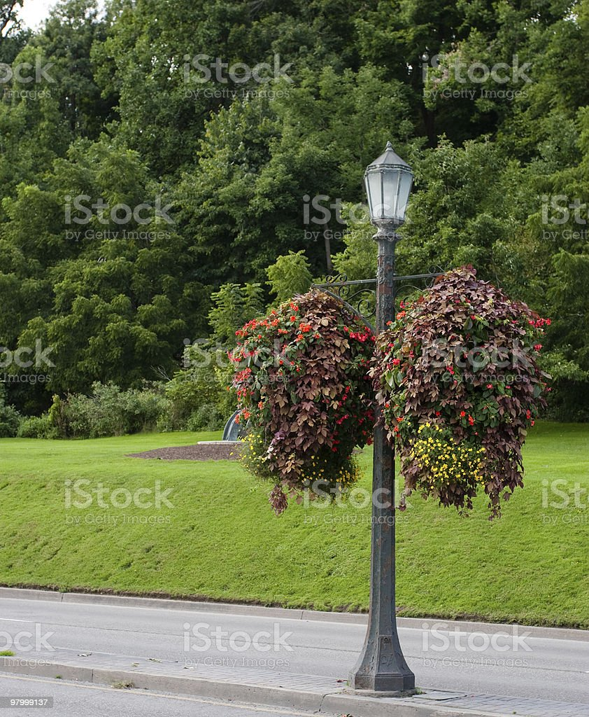 Floral street lamp light post green grass trees red yellow royalty-free stock photo