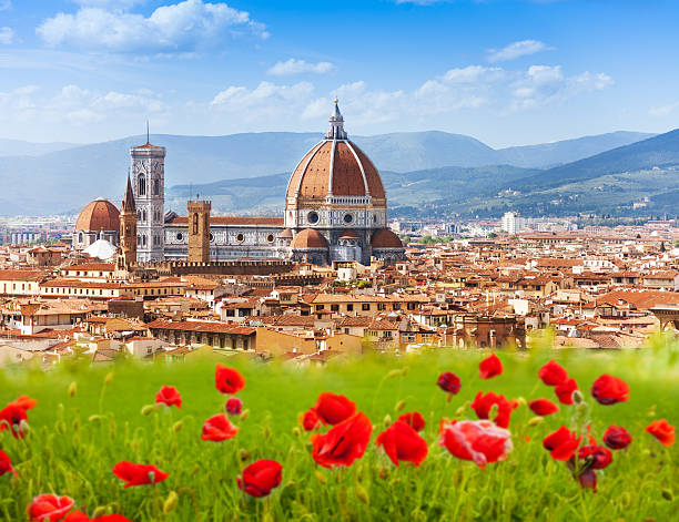 Florence, Duomo and Giotto's Campanile. Florence, Duomo and Giotto's Campanile in poppy flowers florence italy stock pictures, royalty-free photos & images