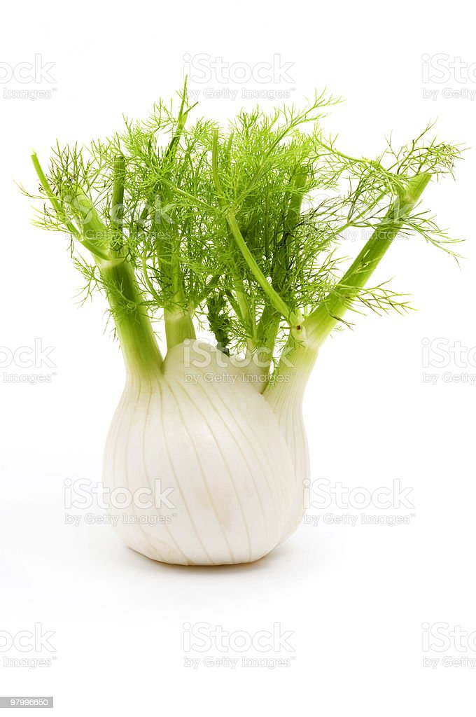 Florence fennel royalty free stockfoto