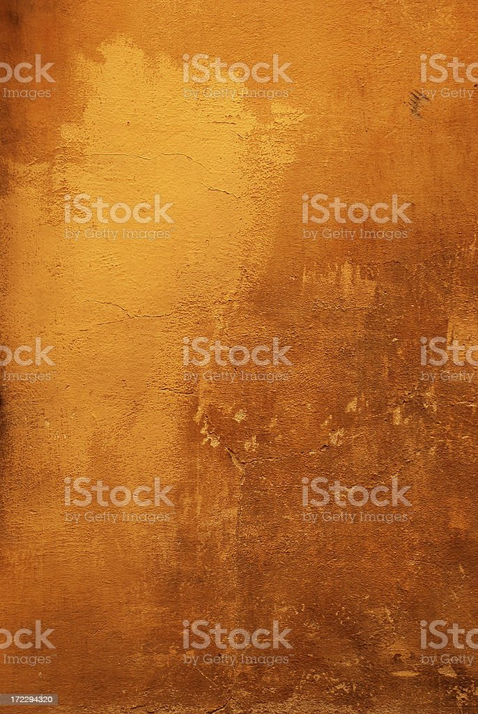 Florentine Canvas stock photo