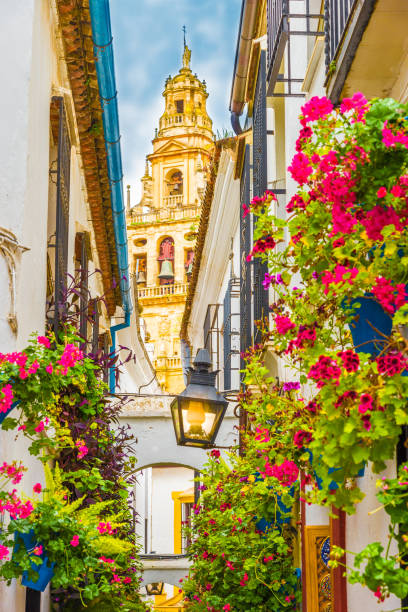 Flores Alley Cordoba, Spain - May 11, 2016: Calleja de las Flores, Cordoba, Spain cordoba spain stock pictures, royalty-free photos & images