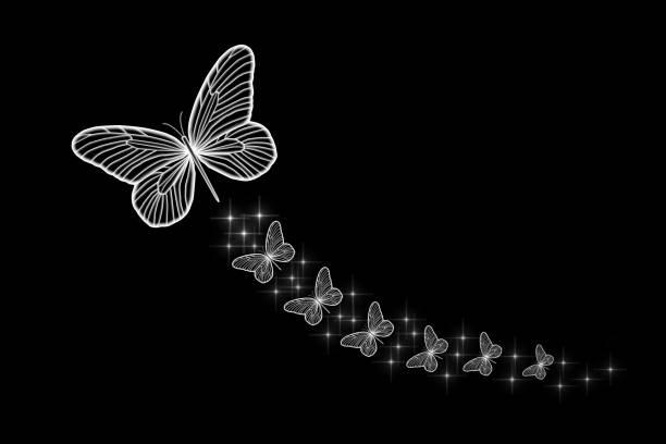 Florescent white butterflies picture id819929342?b=1&k=6&m=819929342&s=612x612&w=0&h=ay9mmukmikaossk1jnclt diwcvtokkvuh qccxcgwc=