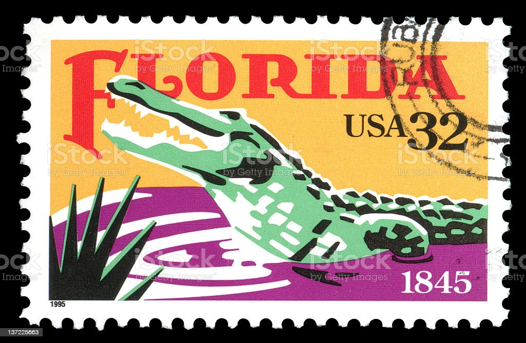 USA Florida Alligator Postage Stamp stock photo