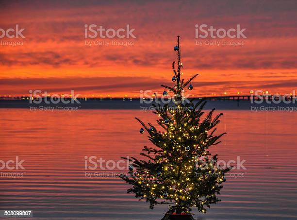 Florida christmas picture id508099807?b=1&k=6&m=508099807&s=612x612&h=yjgwzvhyv1jnagabf7l0bc3oxpjixwdmu0yseghk8sy=
