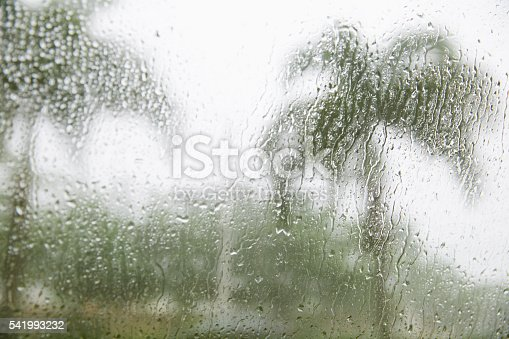 Blurred image of palm trees outside a window with wet rain droplets