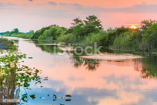 This is a horizontal, color, royalty free stock photograph shot with a Nikon D800 DSLR camera. The sky at dusk reflects pastel colors on the tranquil water's surface. Lilly pads float on this wetland landscape. Trees fill the background.
