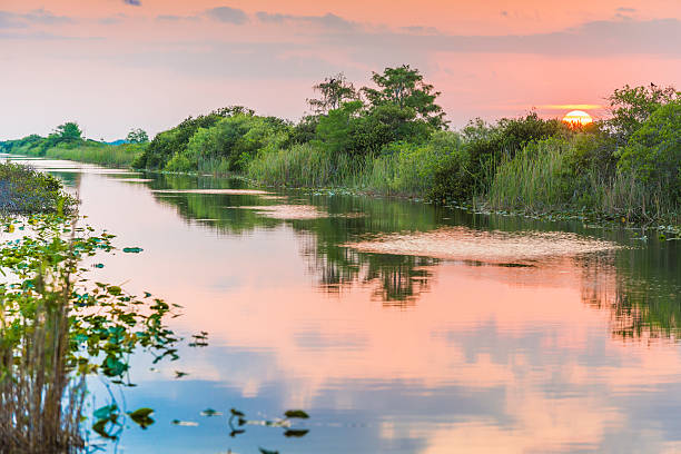 Florida Everglades Sunset Over Wetland Water Canal Landscape stock photo