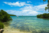istock Florida Keys 1202149407