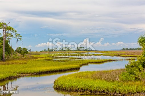 Beautiful view of Florida landscape