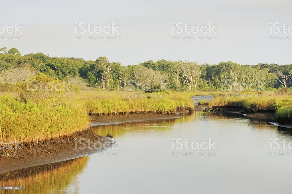 Florida Nature Landscape Tidal Marsh and Creek Amelia Island stock photo