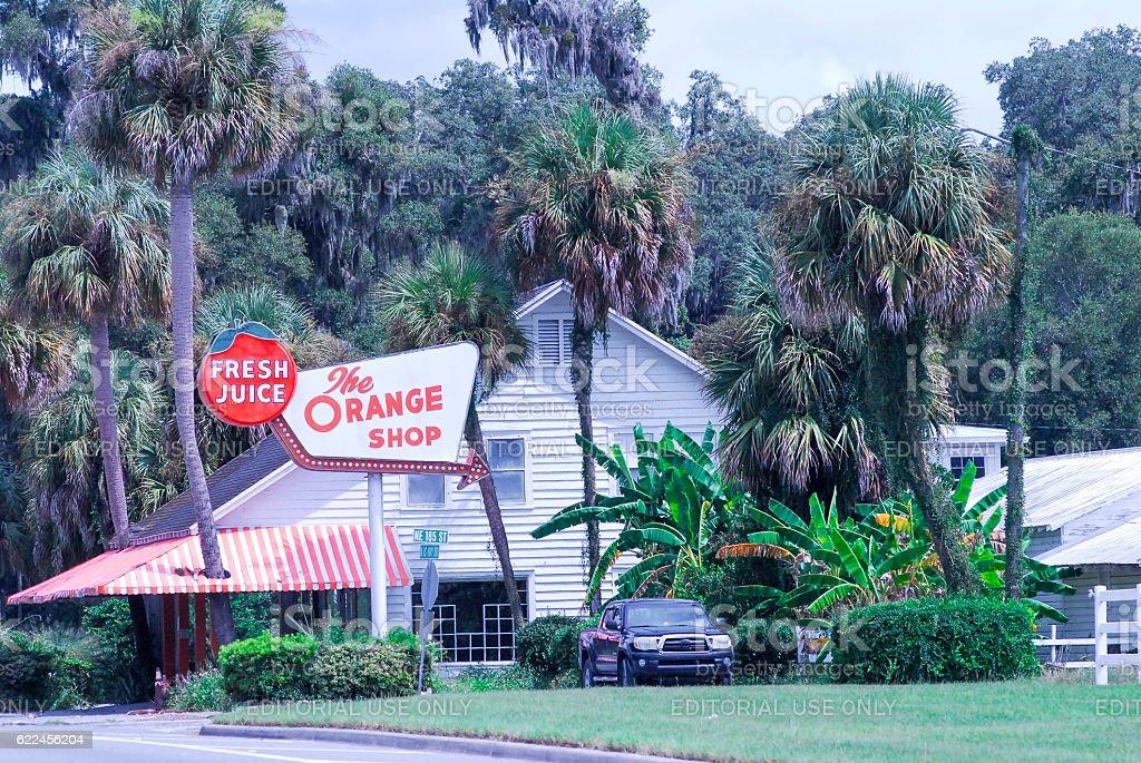 Florida Orange Shop in Citra stock photo