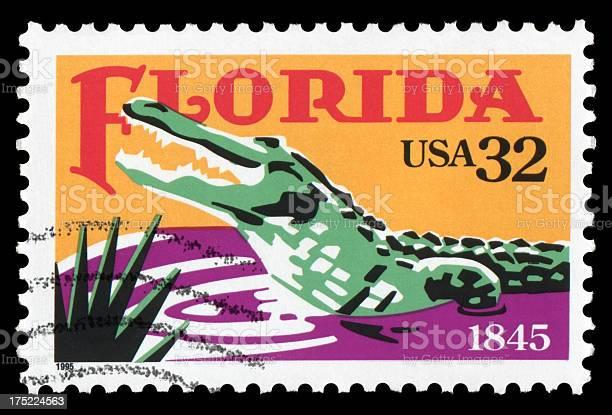 Florida picture id175224563?b=1&k=6&m=175224563&s=612x612&h=6yr3zn39igshntkr9dcjizl8kry16j4tibr zlpw9wy=