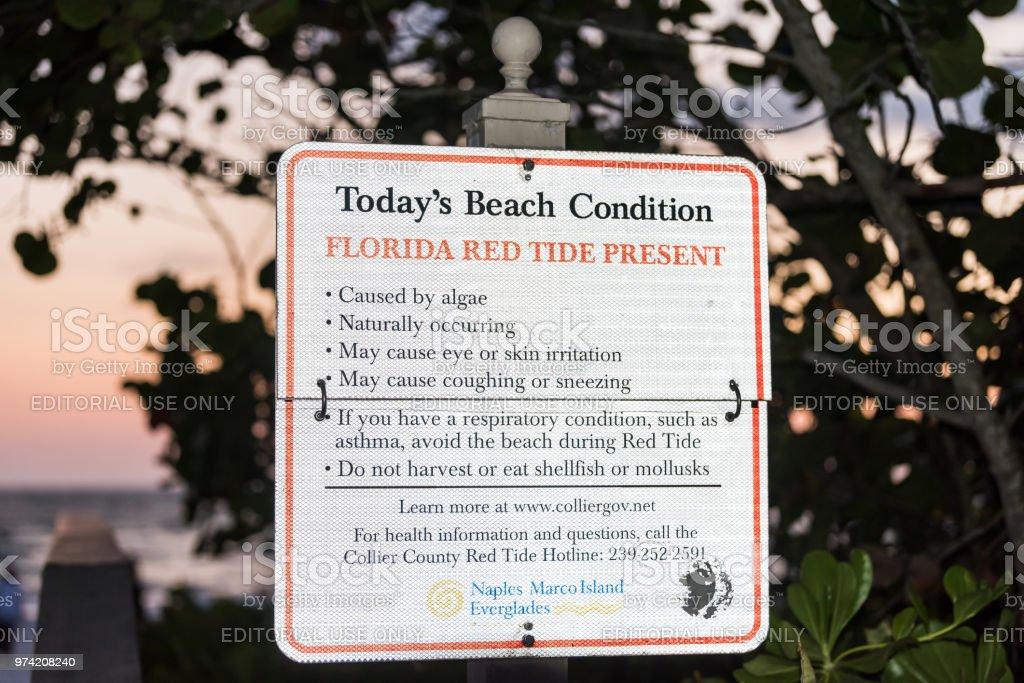 Florida-de-rosa, vermelho e laranja por do sol no Golfo do México com sinal para aviso de bloom de algas de peixe morto maré vermelha - foto de acervo