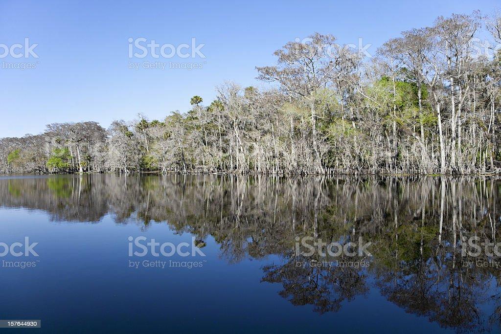 Florida River in Winter stock photo