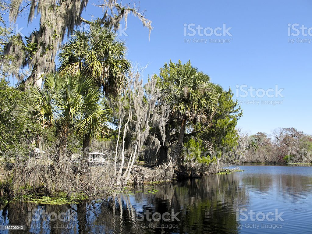 Florida River Scene stock photo