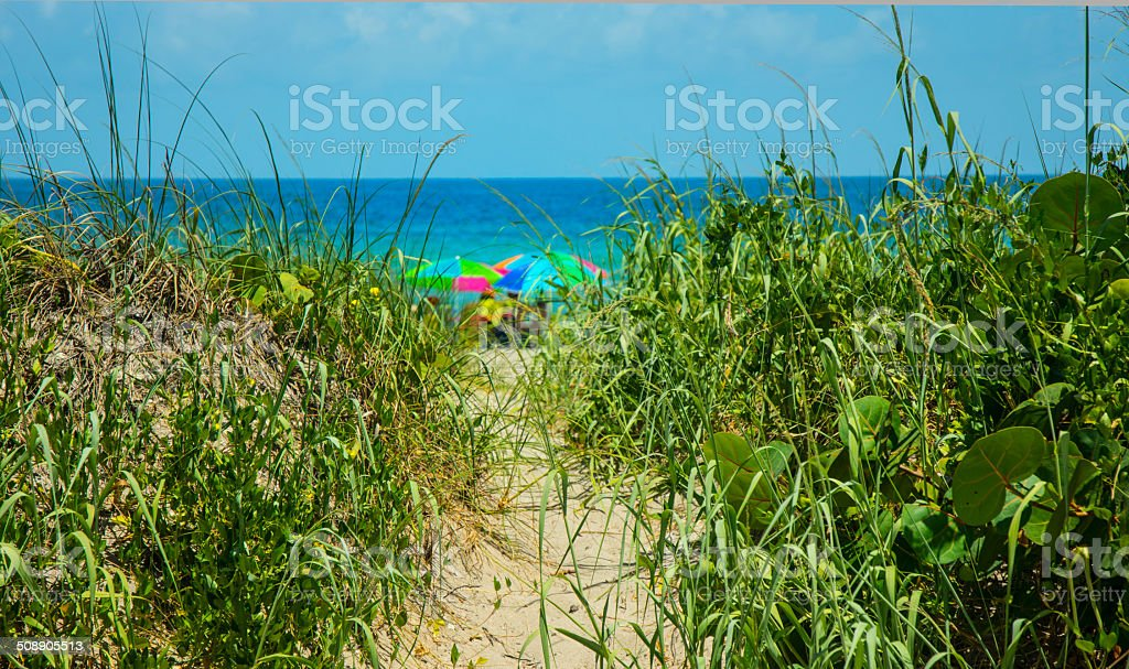 Florida Sandy Beach Pathway Access With Multicolored Umbrellas stock photo