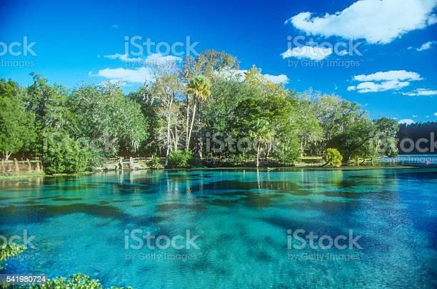 Florida spring picture id541980724?b=1&k=6&m=541980724&s=612x612&h=ceswhrzj z7 seimlvu6qwz65fwvnziceubd htyvwu=