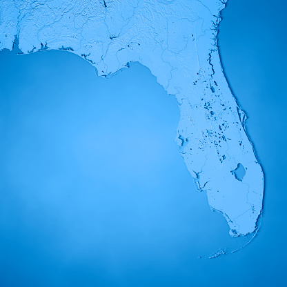 186815169 istock photo Florida State USA 3D Render Topographic Map Blue 843199138