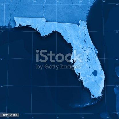 186815169istockphoto Florida Topographic Map 182172306