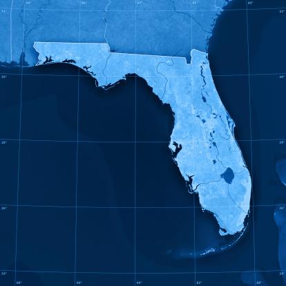 186815169 istock photo Florida Topographic Map 182172306