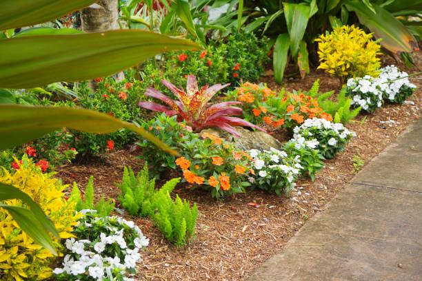 Florida. Usa. Korallen Gables. In der Nähe des Biltmore Hotels. – Foto