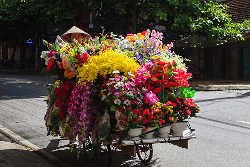 florist down the street in Nam Dinh, Vietnam